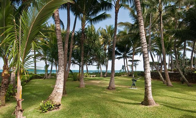 Beachfront Kailua - old Hawaii feel with grove of